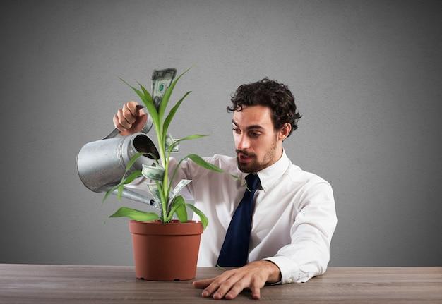 Uomo d'affari che innaffia una pianta che produce soldi