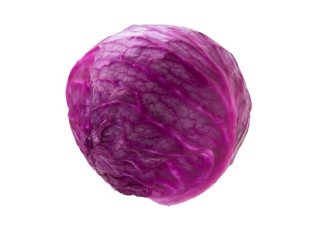 Cavolo rosso isolato. cavolo viola fresco.