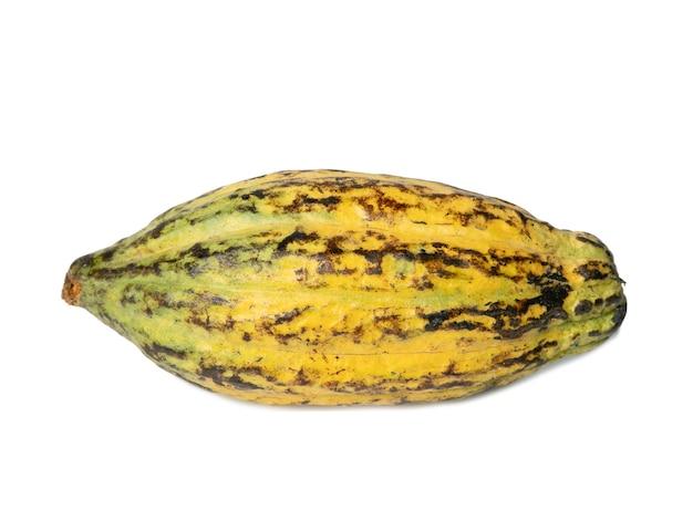 Frutto di cacao, fave di cacao crude, baccello di cacao su sfondo bianco