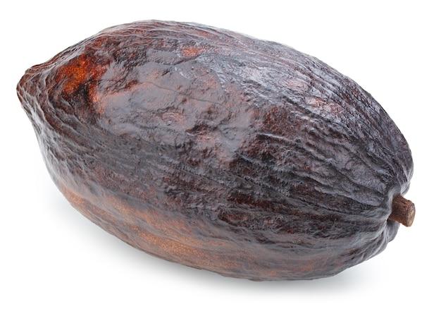 Baccello di frutti di cacao isolato su superficie bianca. baccello del cacao isolato con il percorso di residuo della potatura meccanica. foto di qualità per il tuo progetto.