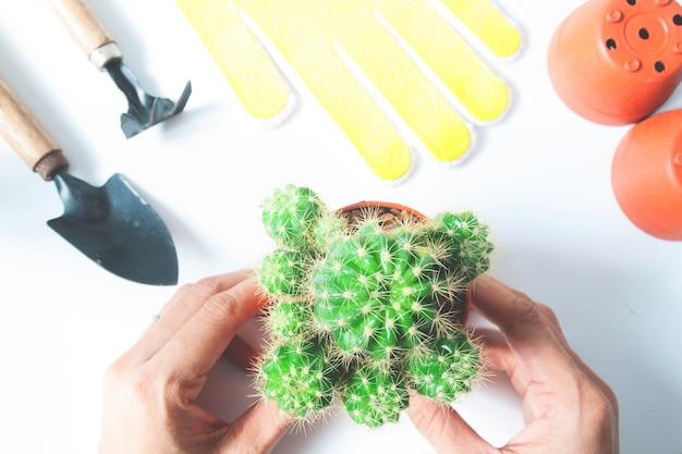 Cactus e giardinaggio strumenti topview