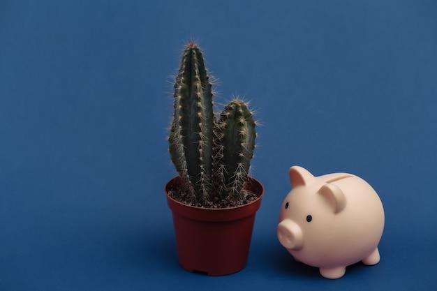Cactus in vaso e salvadanaio su sfondo blu classico