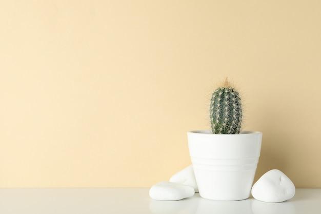 Cactus in vaso e pietre contro la superficie beige