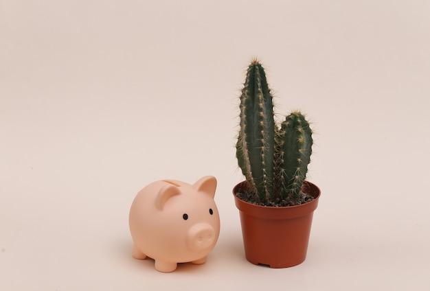 Cactus in vaso con salvadanaio su fondo beige