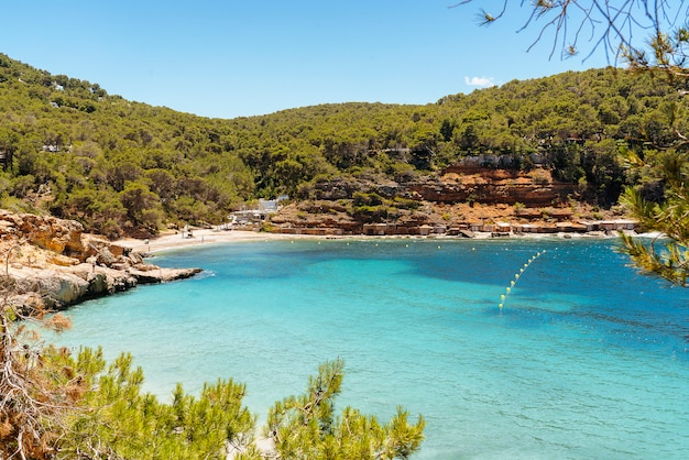 Spiaggia idilliaca mediterranea di cala salada a ibiza, spagna