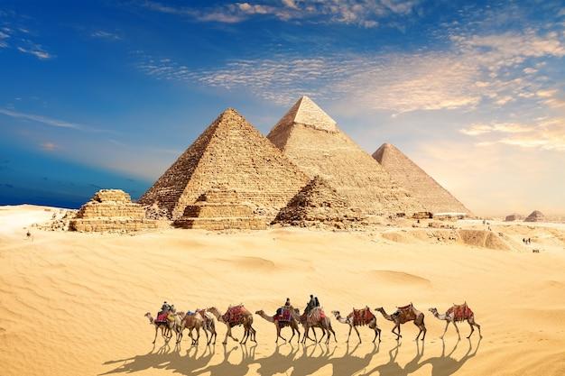 Una carovana di cammelli con beduini presso le piramidi d'egitto nel deserto di giza