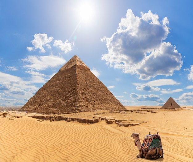 Un cammello vicino alla piramide di khafre e la piramide di menkaure sullo sfondo, giza, egitto.