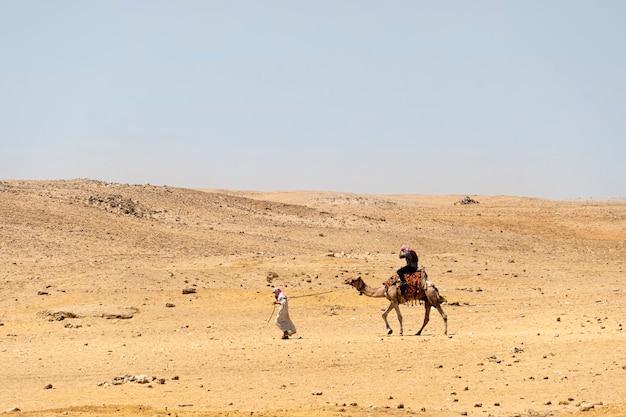 Cavalieri di cammelli nel deserto, egitto. un beduino conduce un cammello nel deserto.