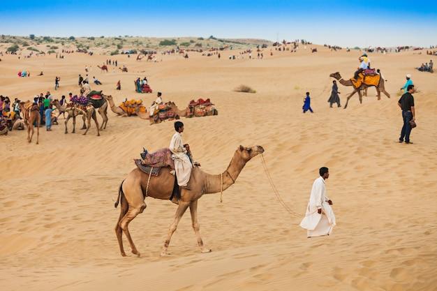 Cammelli nel deserto del thar