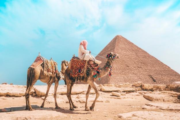 Cammelli con un beduino locale a piedi attraverso il deserto vicino alla grande piramide di khufu a giza vicino al cairo, egitto.