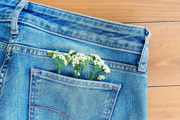 Camomilla nella tasca dei jeans. studio di ripresa macro.