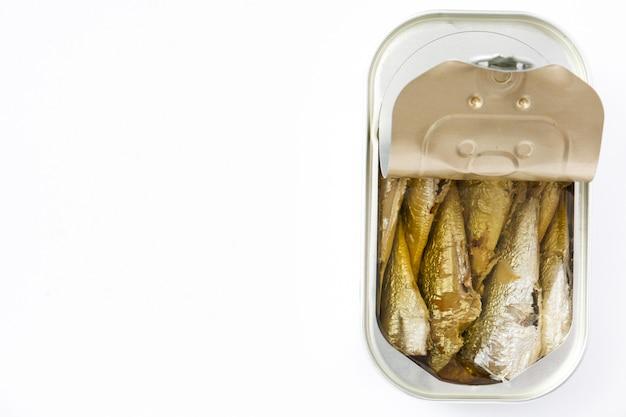 Lattina di sardine isolato su bianco con spazio di copia