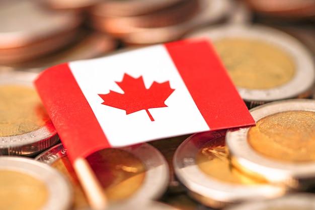 Bandiera del canada sulle monete