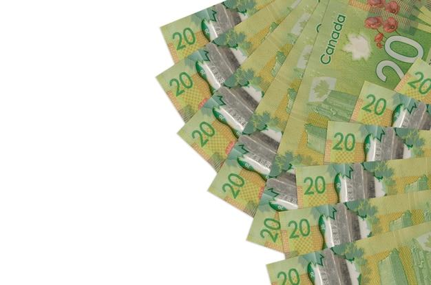 Fatture di dollari canadesi che pongono sulla superficie bianca