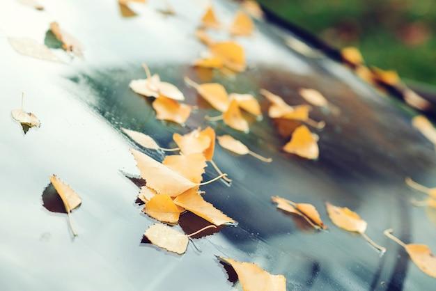 Auto ricoperta di foglie d'autunno. sfondo autunno. tempo piovoso autunnale. le foglie gialle cadono sulla macchina.