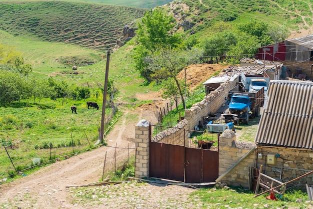 Servizio auto nel villaggio di campagna