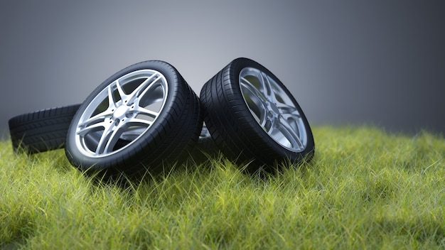 Pneumatici per auto sull'erba