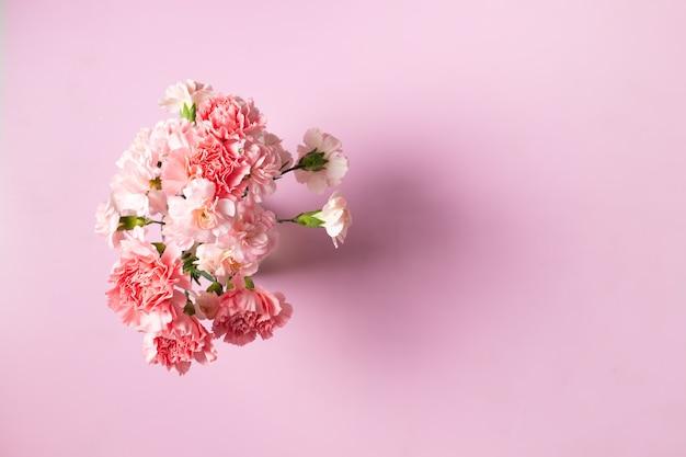 Fiori di garofano su sfondo rosa, festa della mamma e san valentino