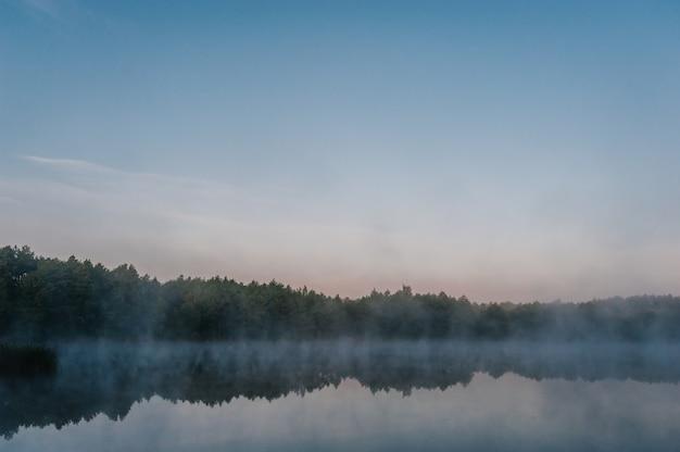 Pesca alla carpa. mattino nebbioso. natura. zone selvagge.