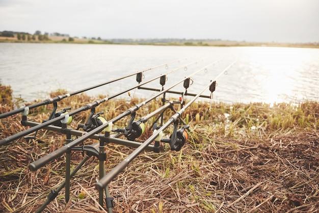 Canne da pesca alla carpa in piedi su treppiedi speciali. bobine costose e un sistema radio di uncinetto