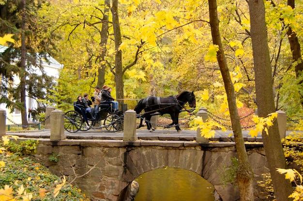 Carrozza con cavalli e persone che attraversa il ponte di pietra nel parco sofiyivka, uman, ucraina 19 ottobre 2007