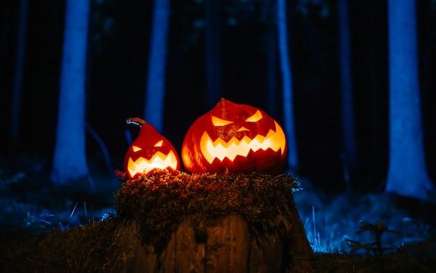 Lanterne di zucca intagliate per halloween su un tronco d'albero in una cupa foresta concetto di orrore