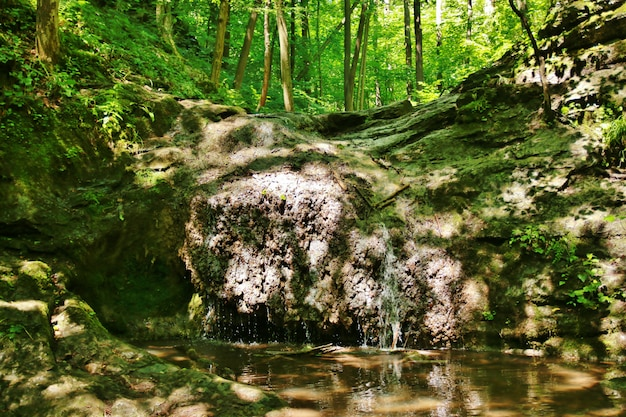 La cascata cade su rocce muschiose