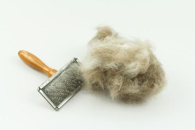Spazzola per gatti con ciuffo di peli di gatto isolato su bianco, manutenzione del gatto a pelo lungo
