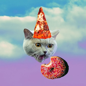 Gatto e cibo. collage di arte contemporanea. divertente progetto minimo di fast food