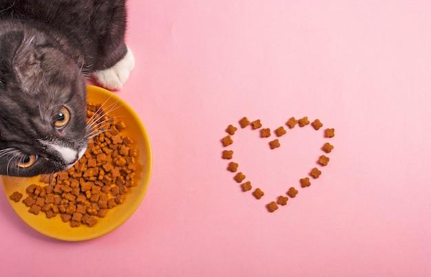 Il cibo per gatti è disposto sotto forma di sfondo rosa cuore