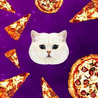 Gatto nell'universo della pizza. collage minimale contemporaneo. divertente progetto di arte del fast food