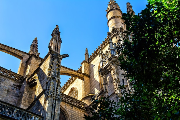 Cattedrale di siviglia in andalusia in spagna, vista posteriore, dettagli