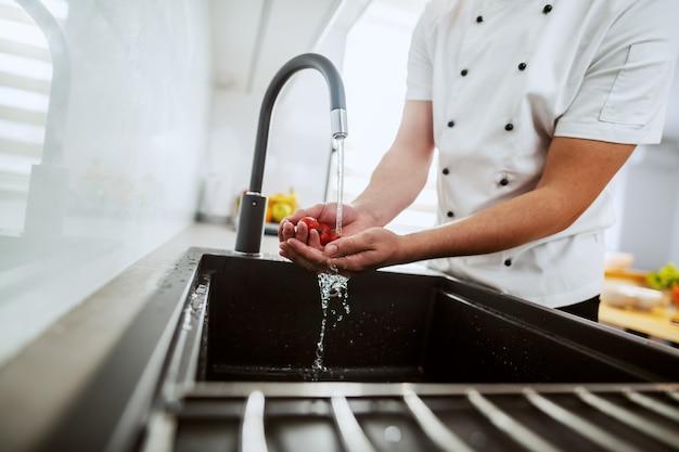 Cuoco unico caucasico che lava i pomodori ciliegia nel lavandino di cucina.