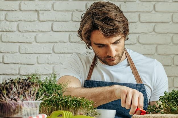 L'uomo caucasico coltiva il micro verde a casa