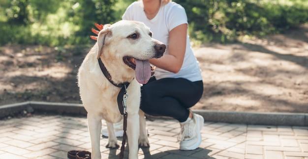 La donna caucasica sta camminando in un parco con il suo cane durante una giornata di sole estivo