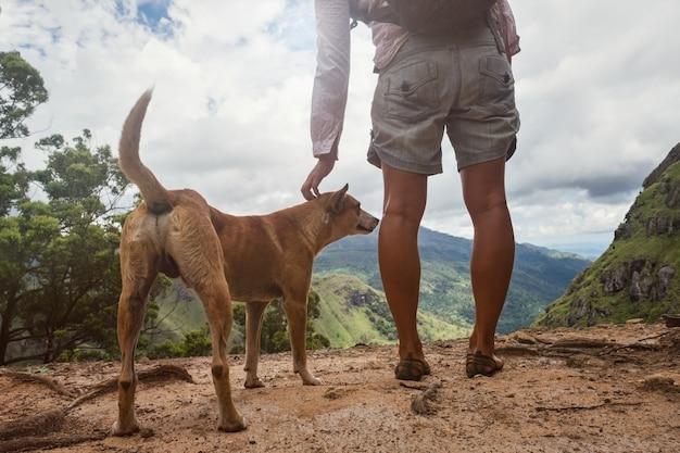 Donna caucasica che sta con il cane e che guarda vista dalla montagna