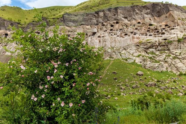 Città-monastero rupestre vardzia. vardzia si trova sui monti erusheti sulla riva sinistra