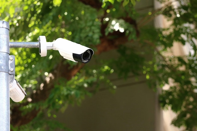Telecamera di sicurezza cctv in strada in città con sfondo di edifici e foglie verdi