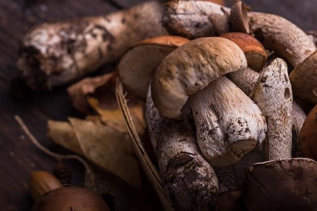 Boletus del fungo dei porcini sopra fondo di legno. i funghi di boletus edulis di autunno si chiudono su sulla tavola rustica di legno. cucinare deliziosi funghi biologici. cibo gourmet