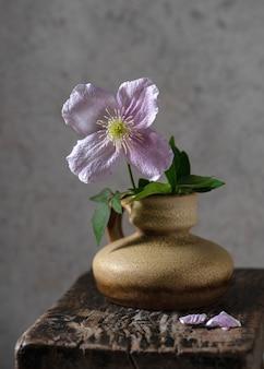Vaso in ceramica con un bel fiore rosa di pianta clematide su uno sfondo di legno rustico