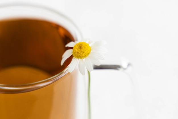 Camomilla e camomilla in tazza di vetro sul tavolo di cemento bianco. tè alle erbe. vista laterale.
