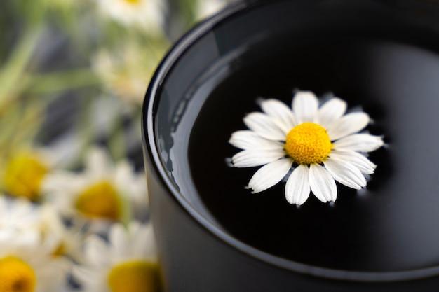 Camomilla e camomille in tazza di ceramica grigia sul tavolo di cemento nero. tè alle erbe. vista dall'alto. lay piatto
