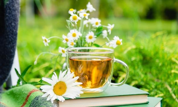 Tè alla camomilla. tazza di vetro di tisana di camomilla con fiori di camomilla sui libri e caldo plaid all'aperto con sfondo naturale in giardino. colazione romantica per il tempo libero, bevanda calda