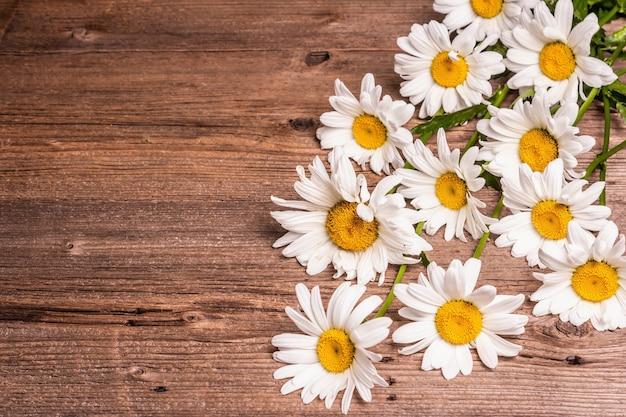 Camomille su uno sfondo di legno. bouquet di fiori freschi, concetto floreale, posto per il testo