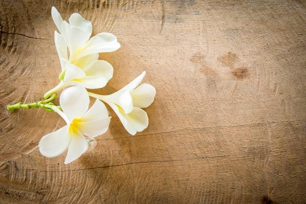 Fiore di champa su fondo di legno