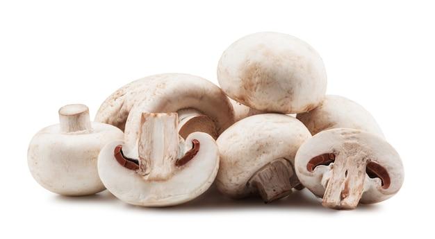 Funghi champignon su backround bianco