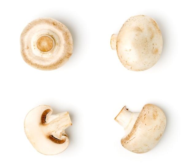Champignon su bianco, diversi tipi. vista dall'alto.