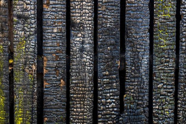 Il muro carbonizzato della casa. edificio dopo l'incendio. struttura in legno dopo il fuoco. foto di alta qualità