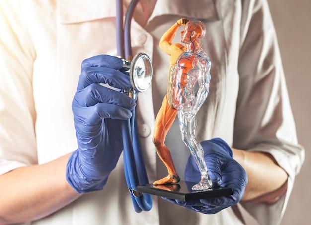 Check up del sistema circolatorio sanguigno e muscolare del corpo umano modello cura della salute dei muscoli e...