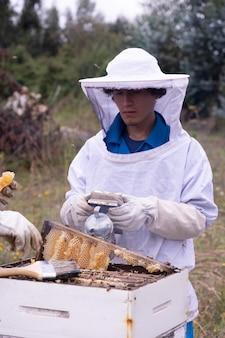 Controllo delle api da miele
